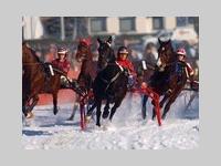 Rasante Pferderennen auf Schnee in Kaprun.